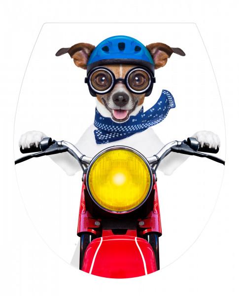 WC-Sitz Biker Dog